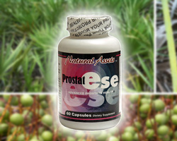 Herbs for Prostate Health. Prostate Problems Symptoms.  